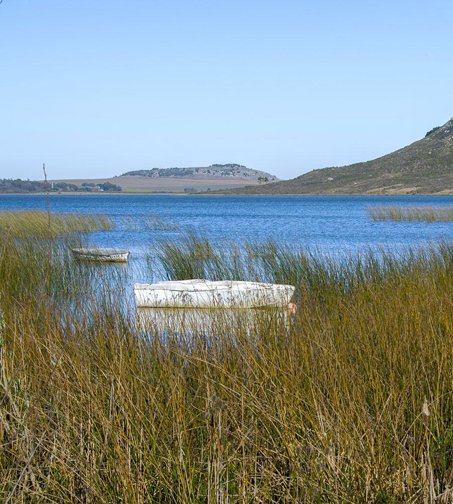 Laguna La Brava